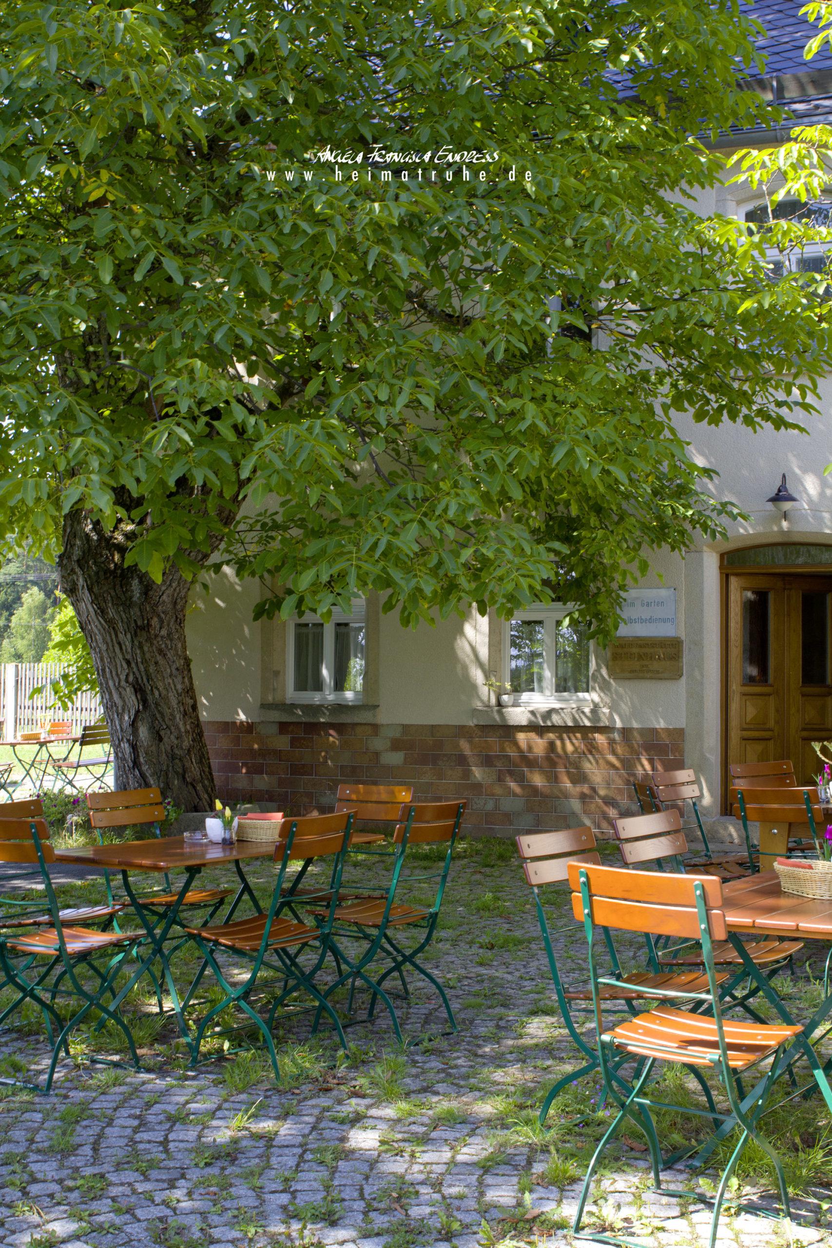 Biergarten unter grossem Walnussbaum Waldgaststätte Steinhaus