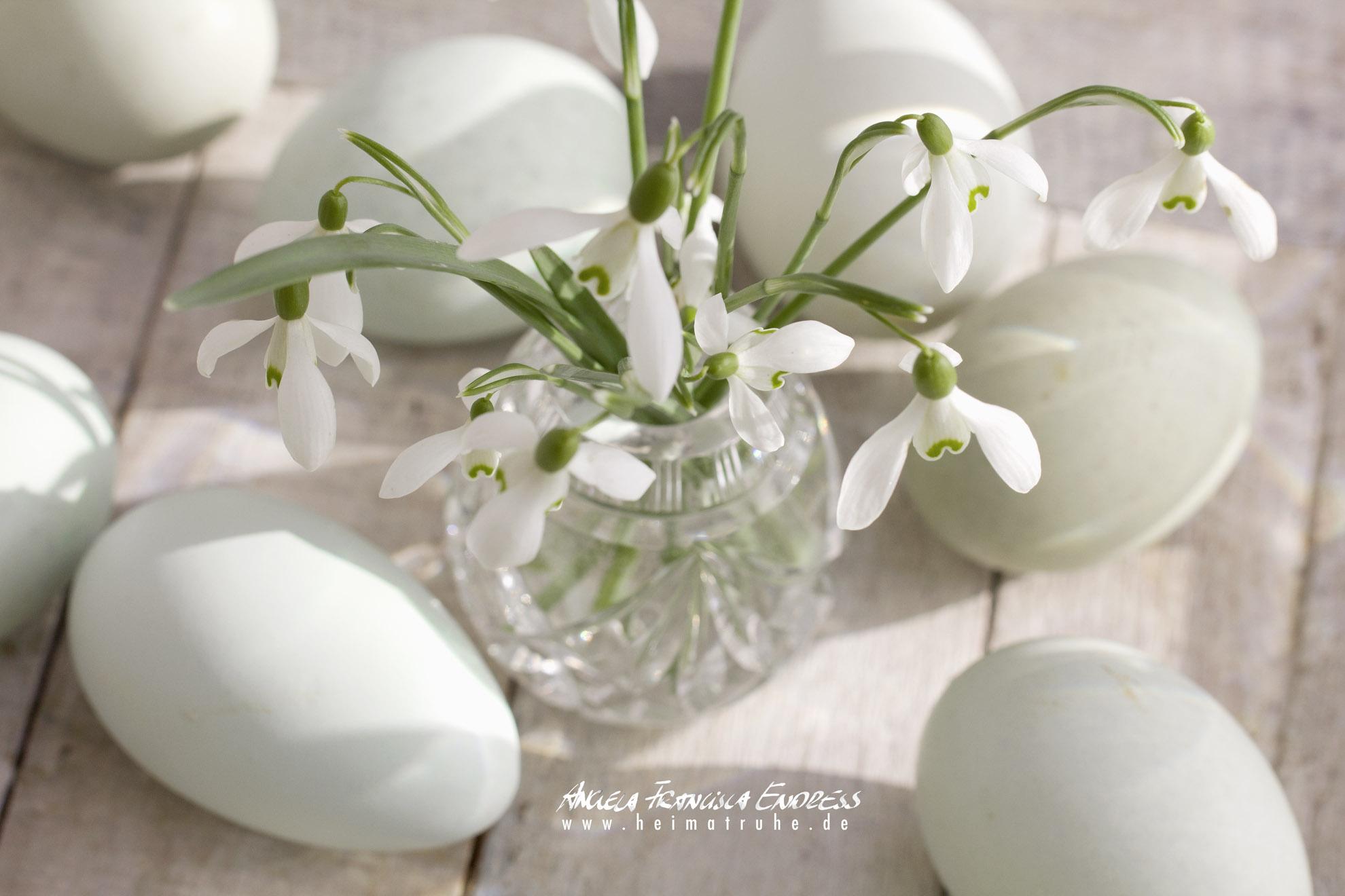 Schneeglöckchen in Kristallväschen mit Grünen Eiern