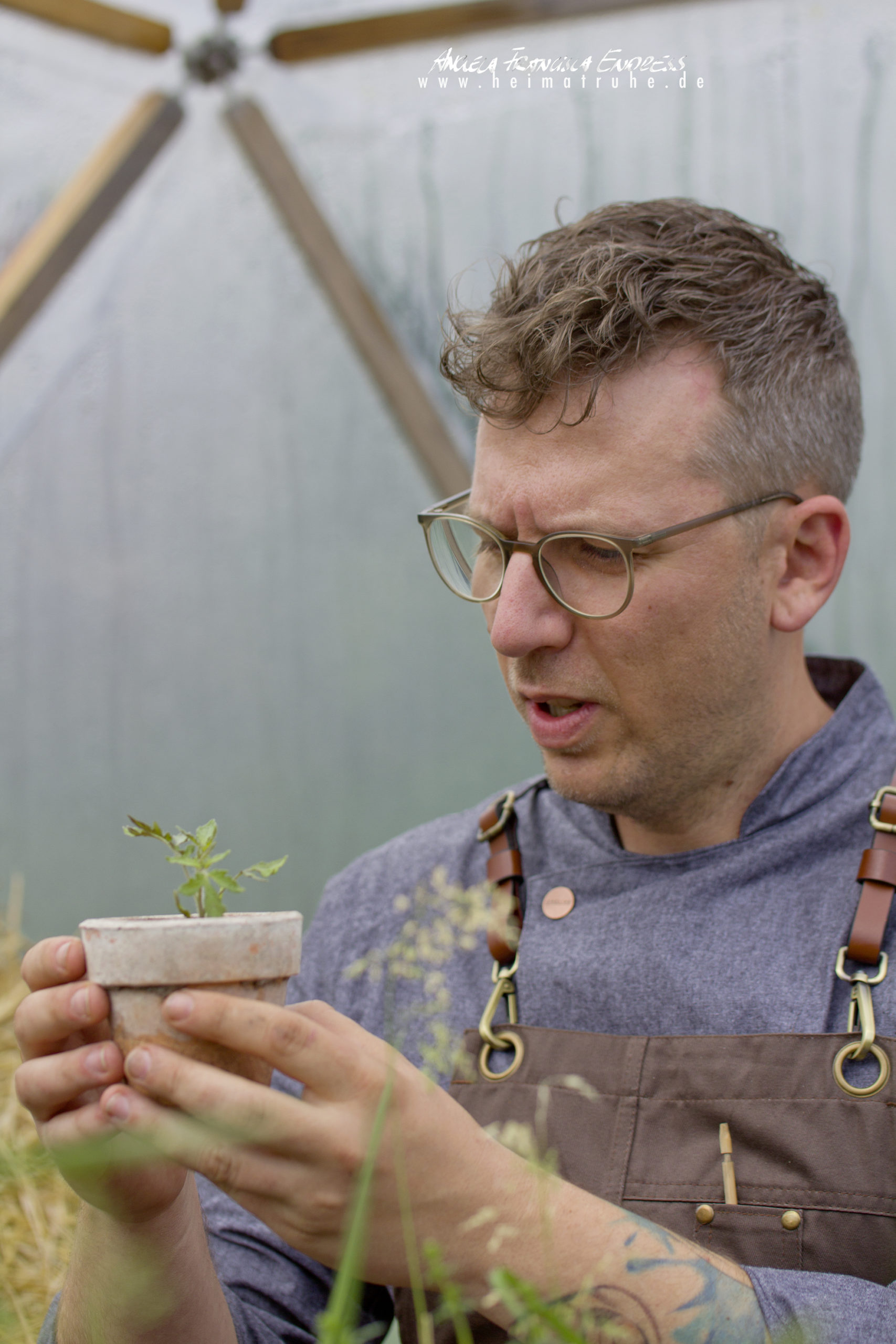 Michael Stoll mit Mini-Tomatenpflanze