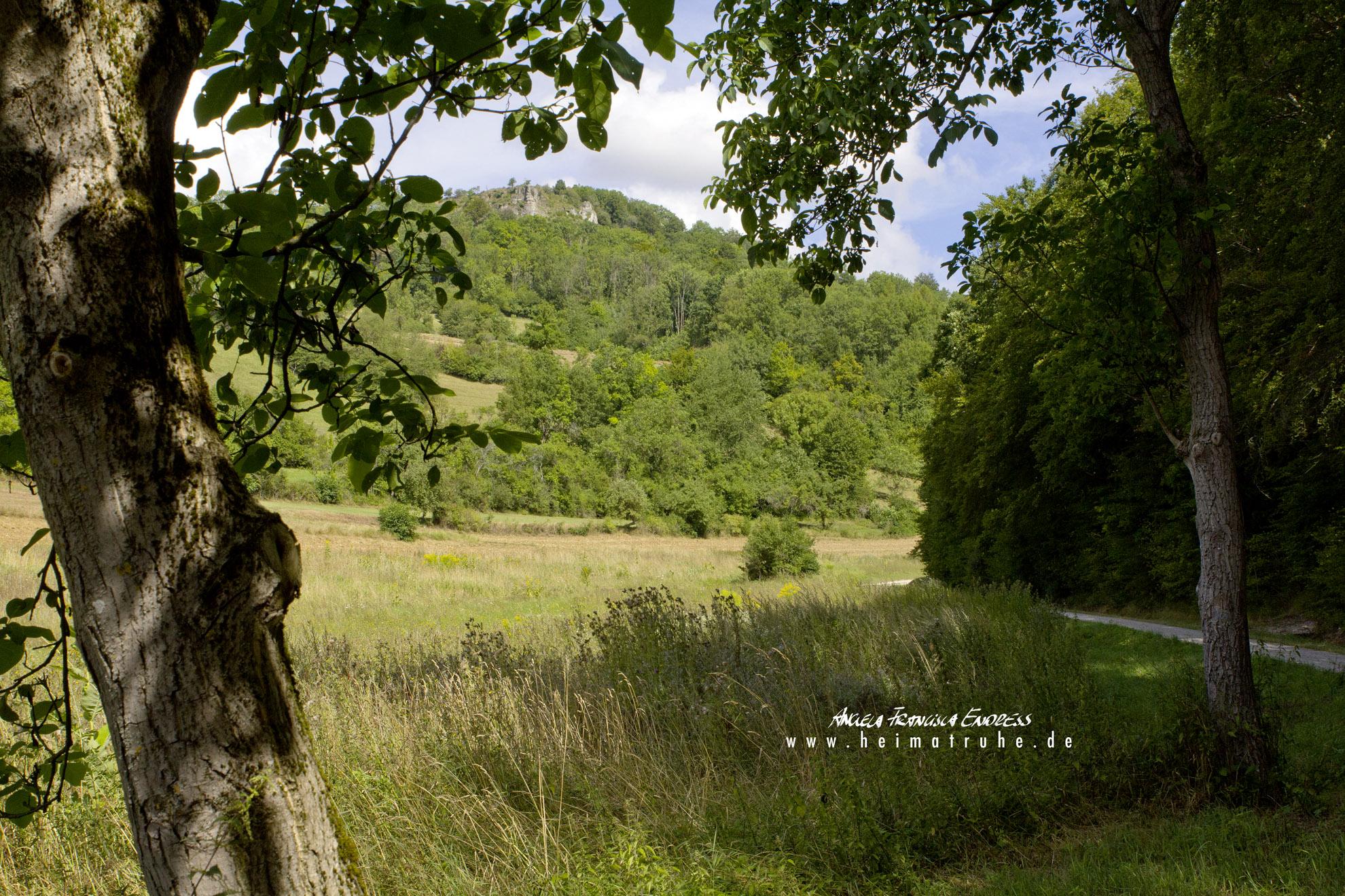 ins Löwental Obermain Jura
