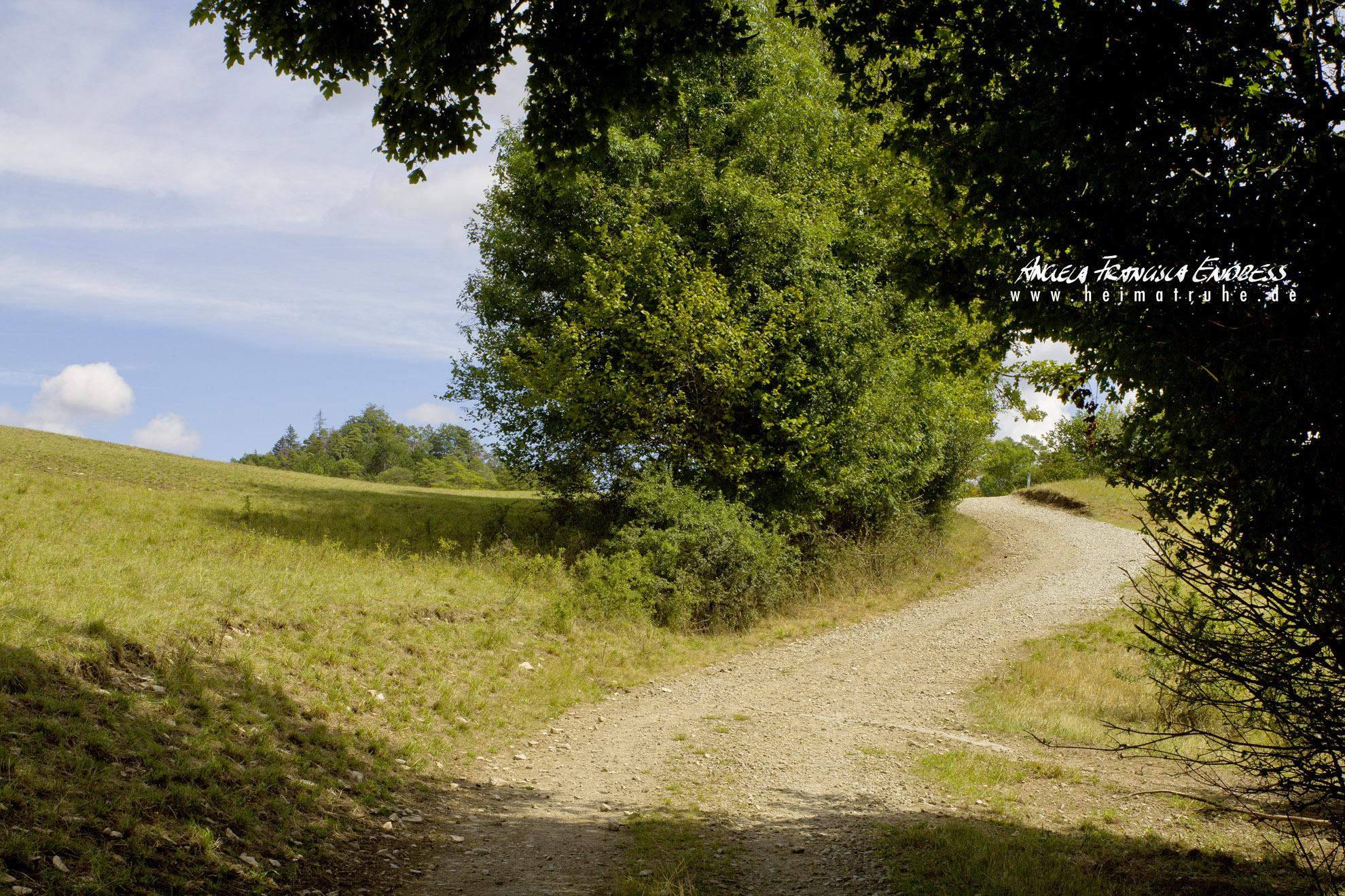 Weg Löwental Richtung Ützing, Stublang, Obermain Jura