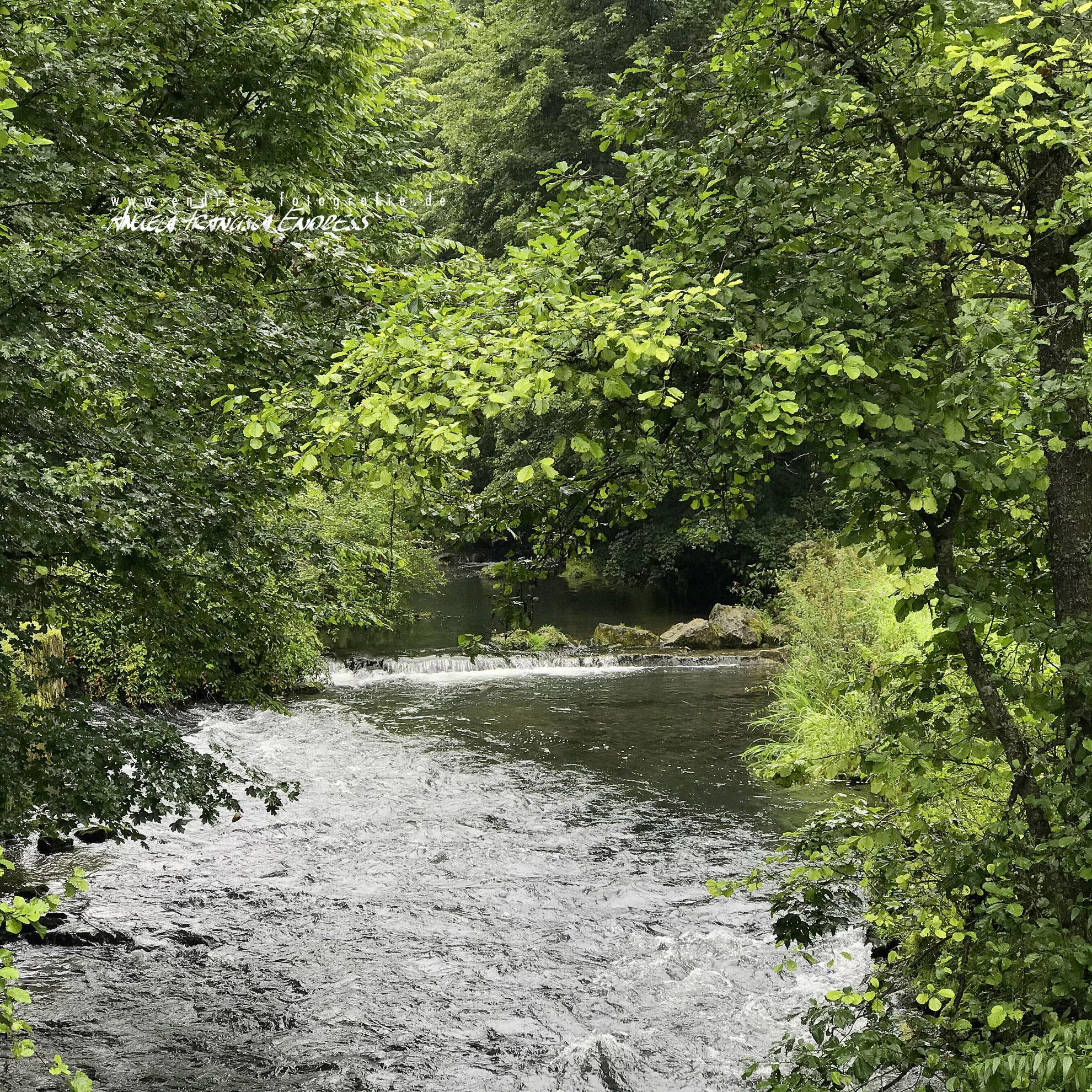 Wiesent Fluss mit Schwelle und Gehölz am Ufer