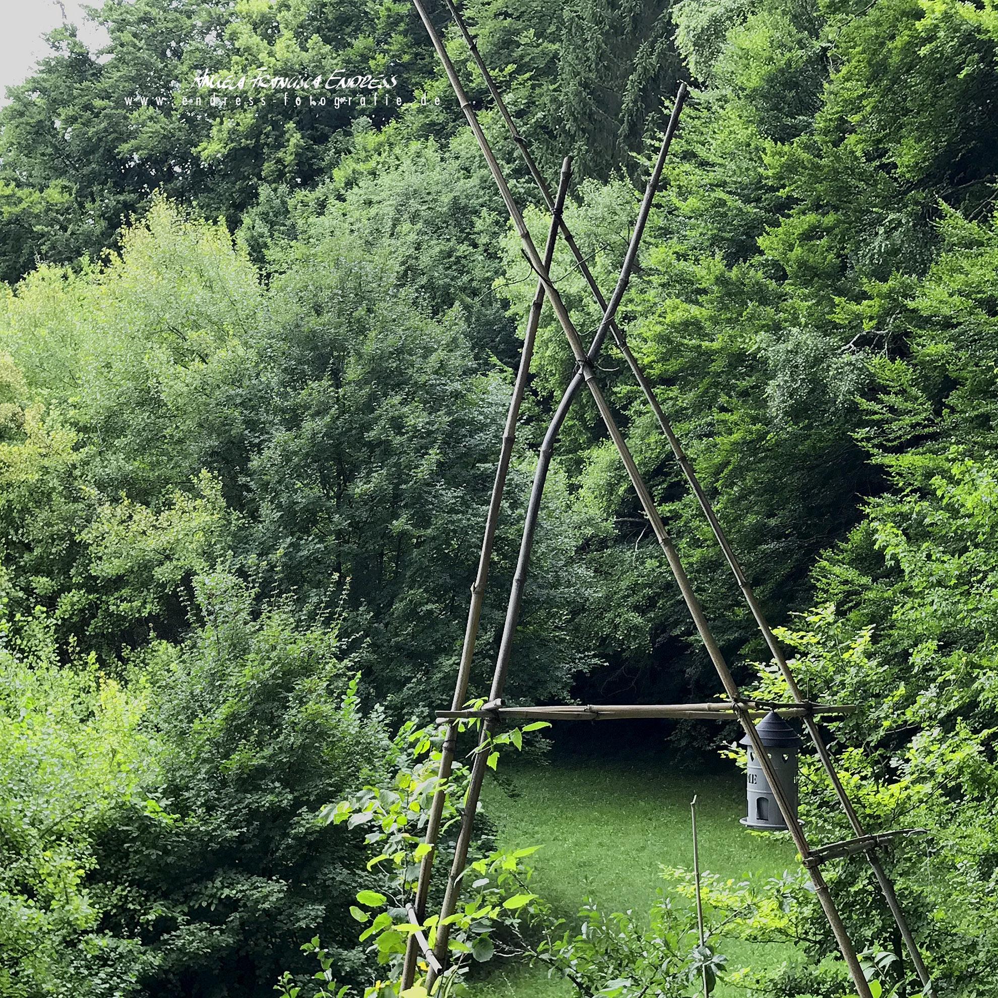 Norberts Bambus-Kunst, Home, Buchen vor Moschendorf